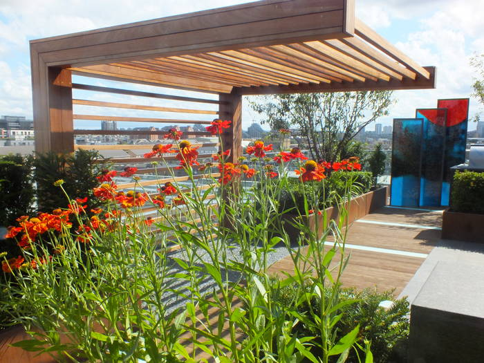 Design A Stunning Rooftop Terrace Garden Aralia Garden Design