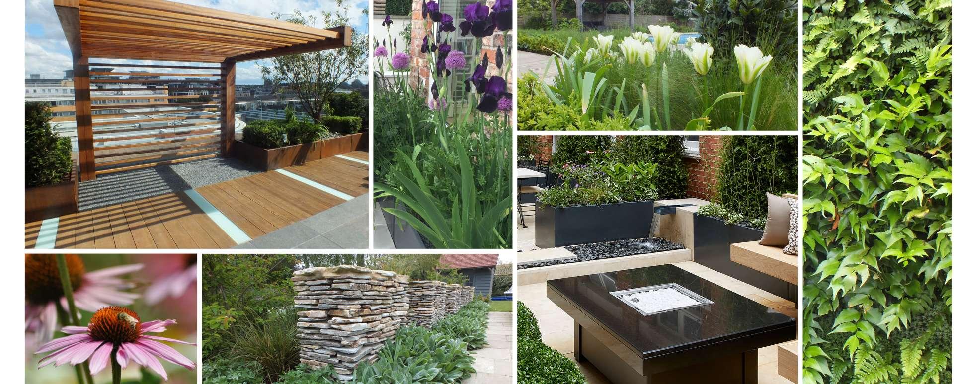 Design Process Aralia Garden Design Landscape Garden Design