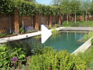 Press play to watch time lapse video of how the Pump House Courtyard garden was built